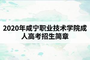 2020年咸宁职业技术学院成人高考招生简章
