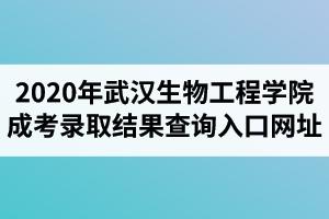 2020年武汉生物工程学院成人高考录取结果查询入口网址