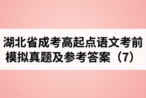 湖北省成人高考高起点语文考前模拟真题及参考答案(7)