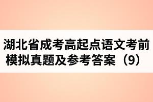 湖北省成人高考高起点语文考前模拟真题及参考答案(9)