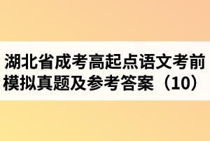 湖北省成人高考高起点语文考前模拟真题及参考答案(10)