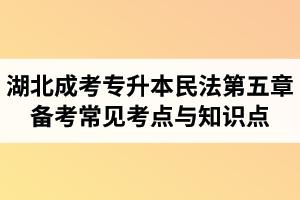 湖北省成人高考专升本民法考试第五章备考常见考点与知识点