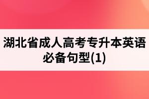 湖北省成人高考专升本英语必备句型(1)