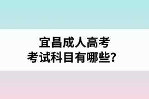 宜昌成人高考考试科目有哪些?