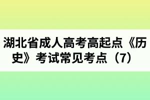 湖北省成人高考高起点《历史》考试常见考点(7)