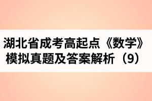 湖北省成考高起点《数学》模拟真题及答案解析(9)