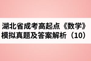 湖北省成人高考高起点《数学》模拟真题及答案解析(10)