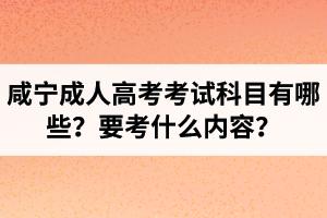 咸宁成人高考考试科目有哪些?要考什么内容?