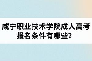 咸宁职业技术学院成人高考报名条件有哪些?